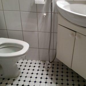 Sieripirtin päämökin wc