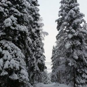 Talvitunnelmaa matkalla Sieripirtille